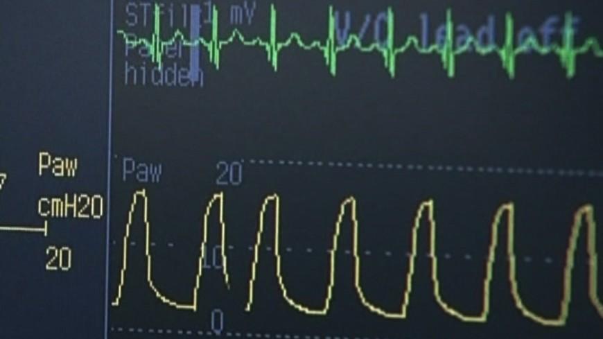 Ученые: сердце можно запрограммировать на жизнь без кислорода