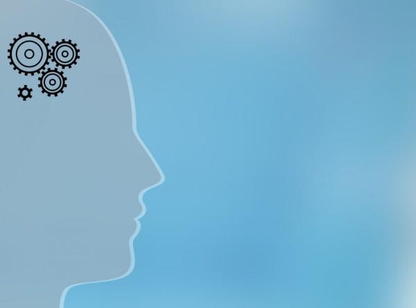 Человеческий мозг развивается на протяжении всей жизни