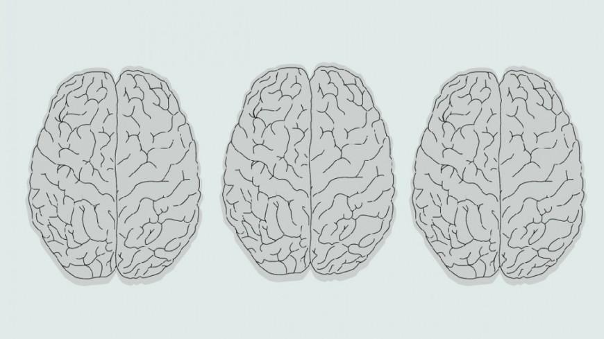 От бабушек и кузенов: как передается болезнь Альцгеймера