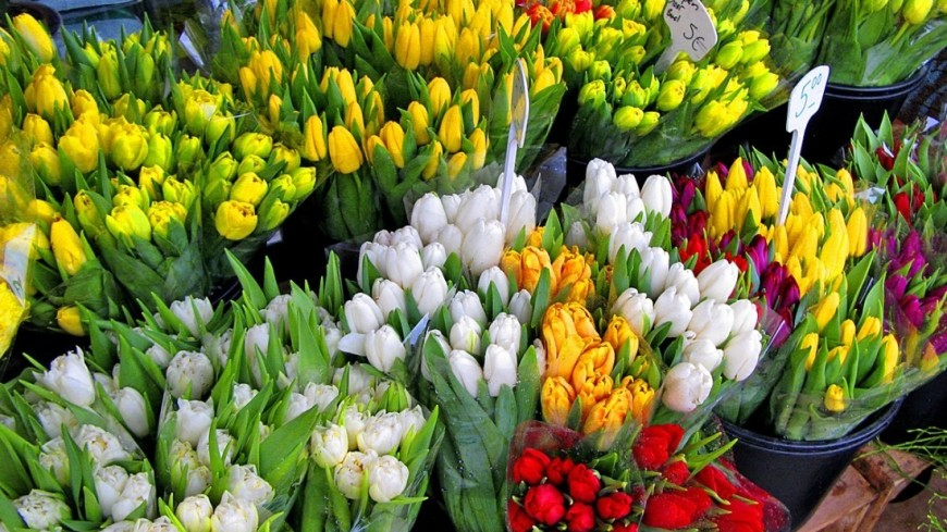 """Фото: Надежда Сережкина, """"МТРК «Мир»"""":http://mir24.tv/, рынок, берлин, германия, тюльпаны, цветы"""