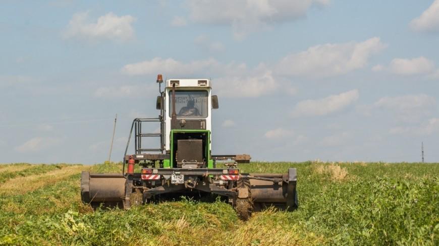 Назарбаев: Казахстану нужно обеспечивать себя собственной сельхозпродукцией