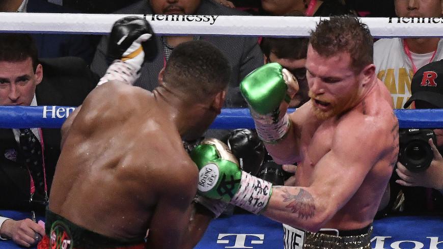 Нет эмоций: Головкин не оценил бой между боксерами Альваресом и Джейкобсом