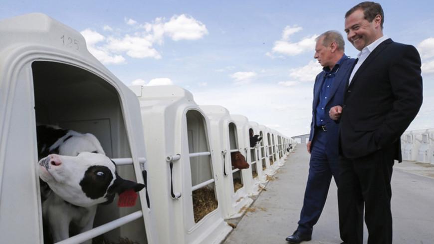 Медведев: В развитии села надо сделать качественный шаг вперед