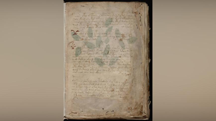Рукопись на мертвом языке: раскрыт секрет манускрипта Войнича