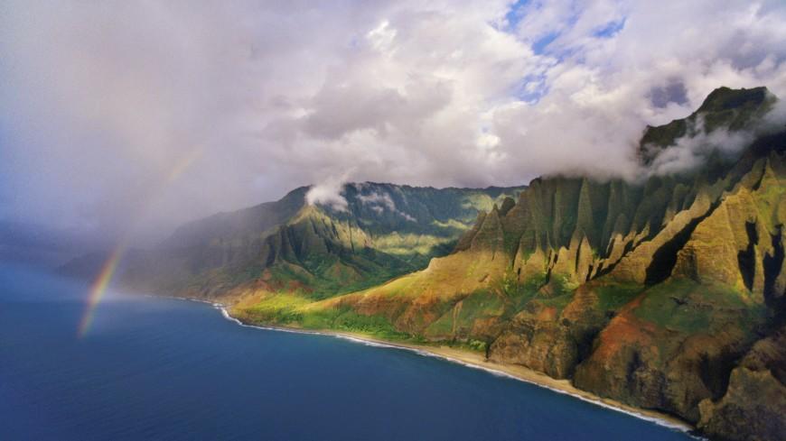 На Гавайях нашли паразитов, поедающих человеческий мозг