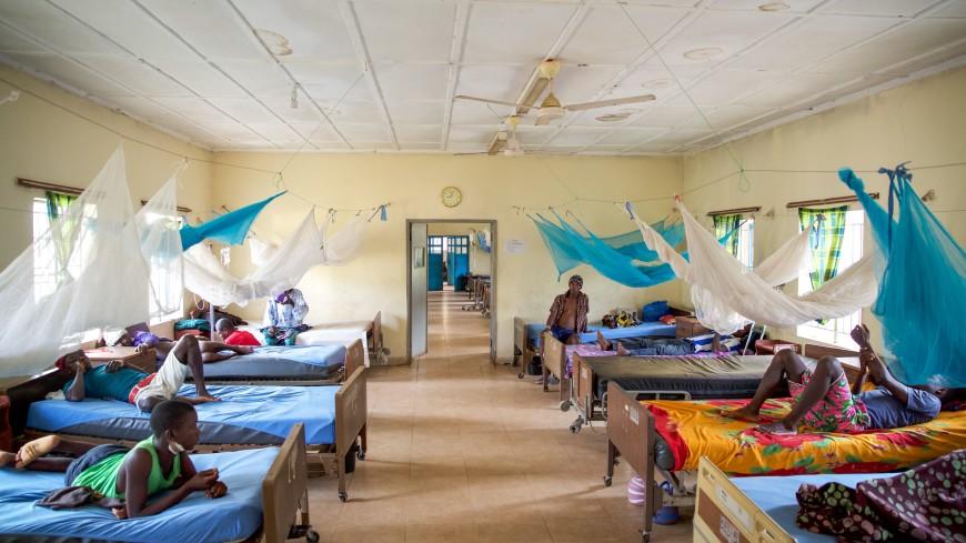 ВОЗ: Количество свободных от малярии стран достигло 38