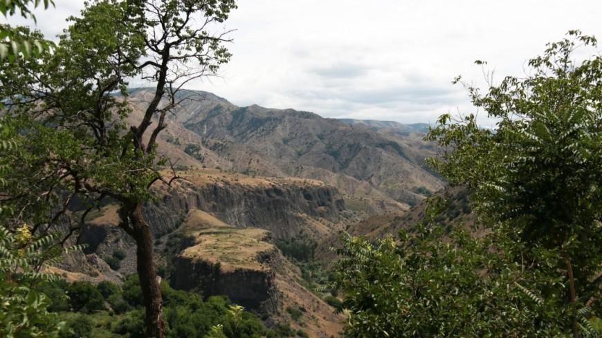 Экономический потенциал Сюникской области Армении показали на бизнес-форуме
