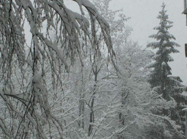 Морозы, метели и ураган обрушились на Сибирь и Дальний Восток