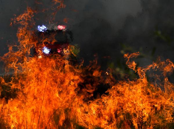 Сидней окутало дымом от пожаров: огонь подбирается к крупнейшему городу Австралии