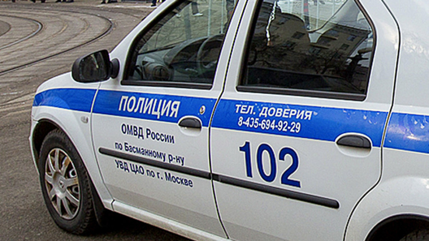 В центре Москвы пьяная девушка ударила полицейского в ухо