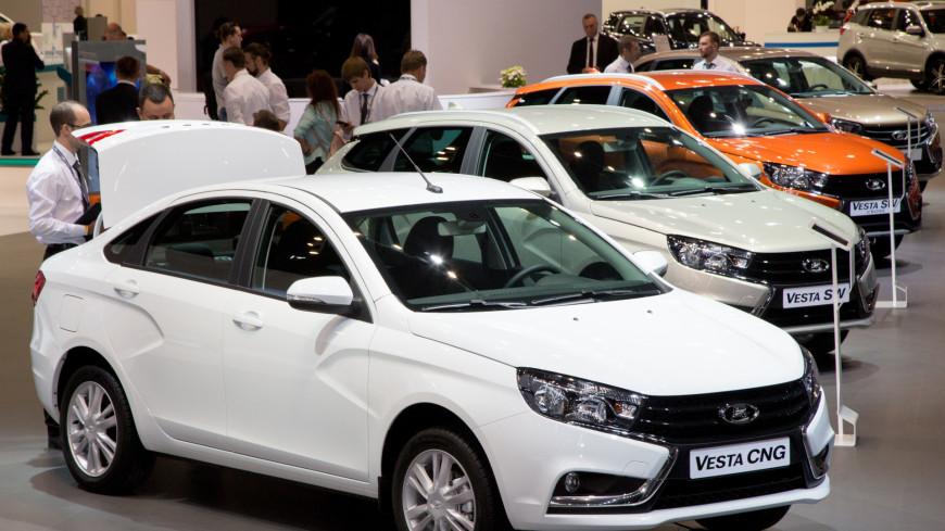 Названы регионы России, где чаще всего покупают новые машины