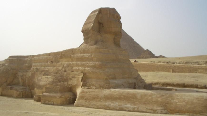 "Фото: Елена Любутова, ""«МИР 24»"":http://mir24.tv/, египет"