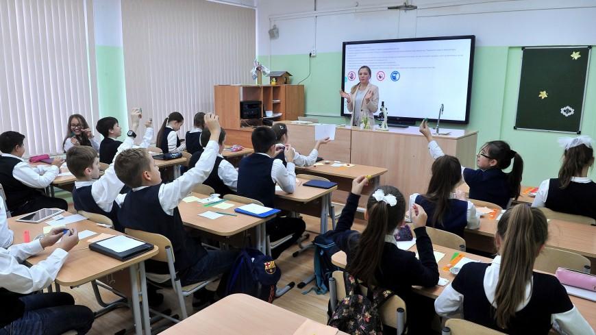 Родители моют окна, учителя боятся увольнения за цветы: что происходит с поборами в российских школах?