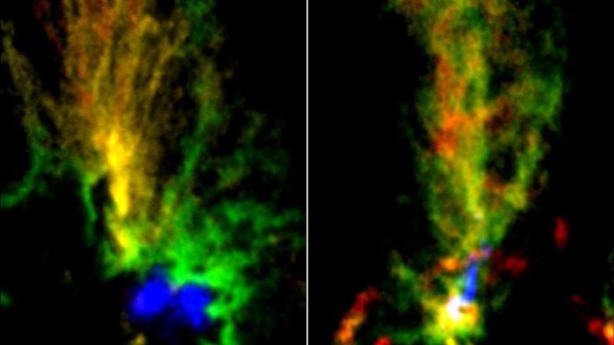 В Магеллановых облаках заметили космических «павлинов»
