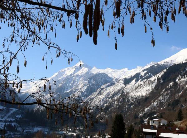 Таяние ледников в Швейцарских Альпах признали беспрецедентным