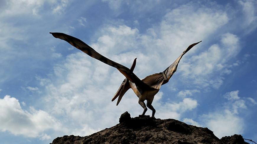 В Австралии нашли кости «железного дракона» из эпохи динозавров