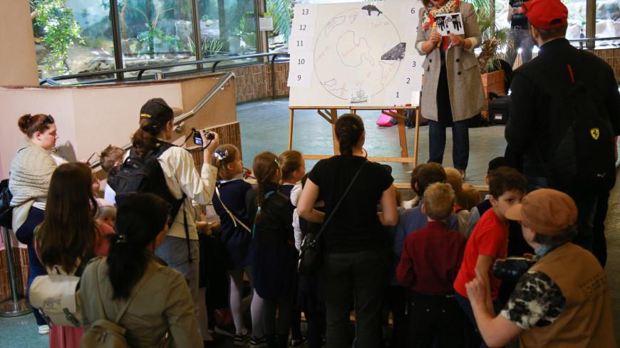 зоопарк, московский зоопарк, дети. обучение, экскурсия, экскурсовод, гид, школьники, рассказ, группа,