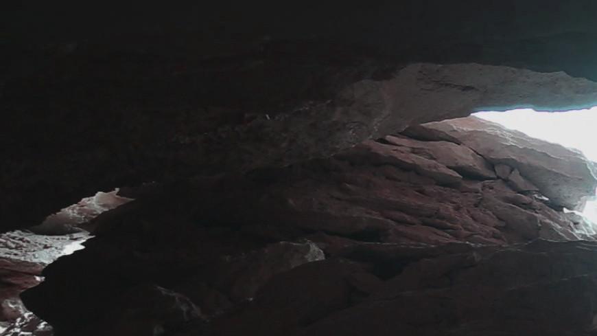 В Якутии найдены полностью сохранившиеся тела пещерных львят