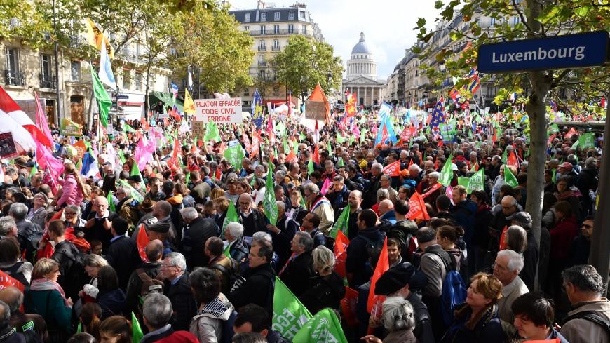 Более 70 тысяч человек вышли на улицы Парижа, выступая против ЭКО для всех