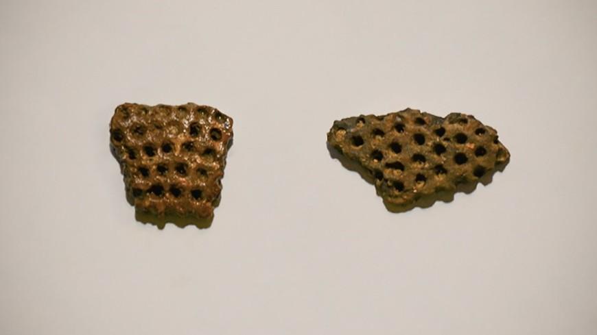 В центре Москвы нашли остатки древнего сосуда времен неолита