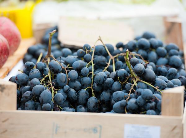 Виноградные заторы: в грузинской Кахетии не справляются с переработкой ягод