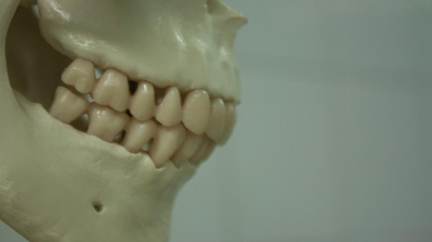Медики получили искусственную зубную эмаль