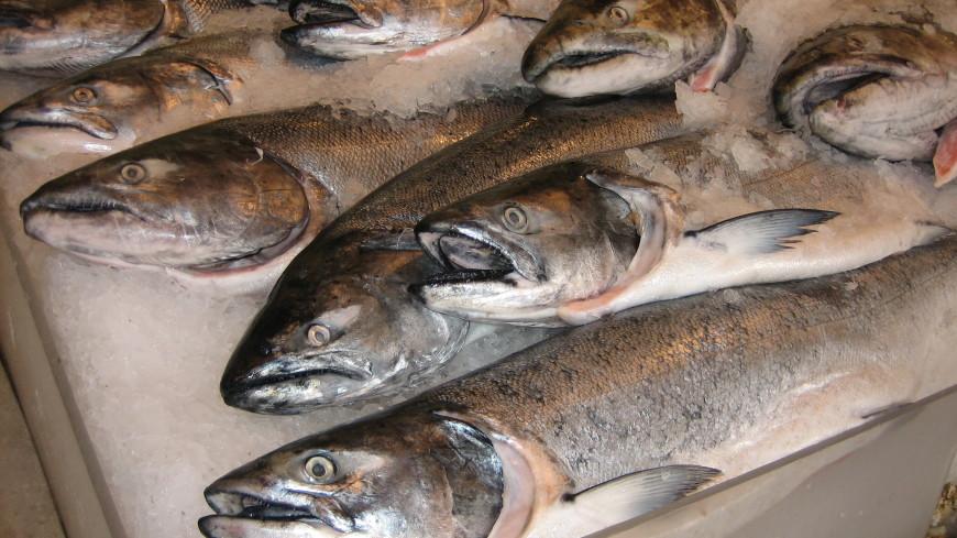 Рыба несбывшейся мечты: в России резко подорожал лосось