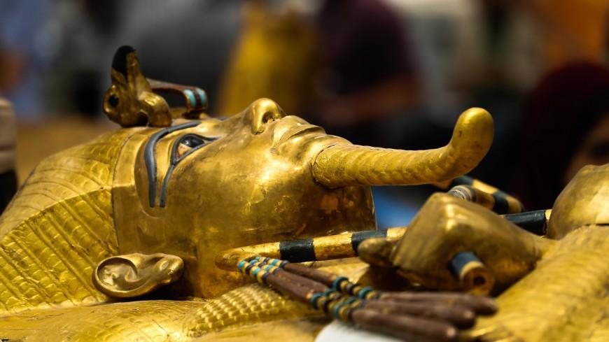 Выставку сокровищ Тутанхамона в Париже посетили рекордные 1,4 млн человек