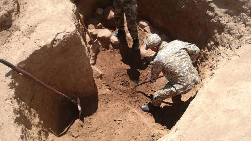 В Китае нашли следы доисторической многоножки