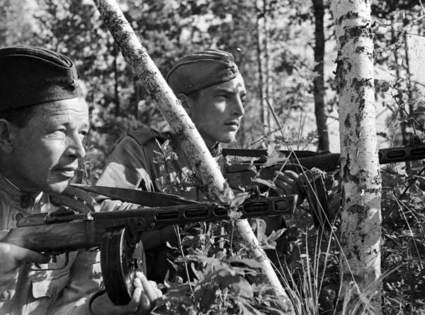 Тест: разбираетесь ли вы в оружии и технике времен Великой Отечественной войны?