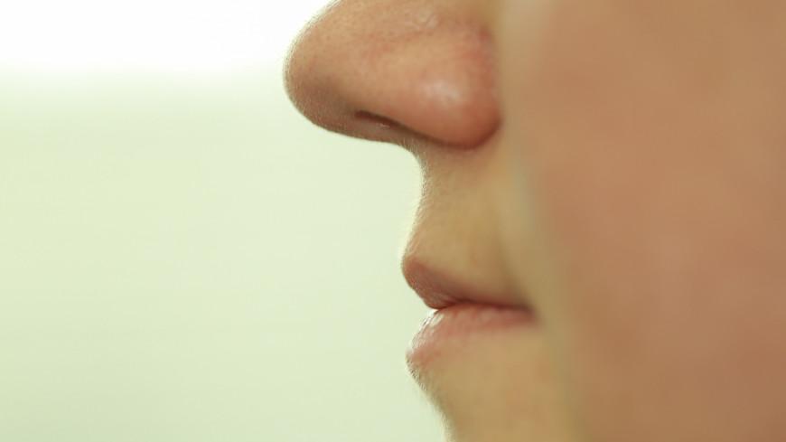 Набор лишнего веса оказался связан с запахами