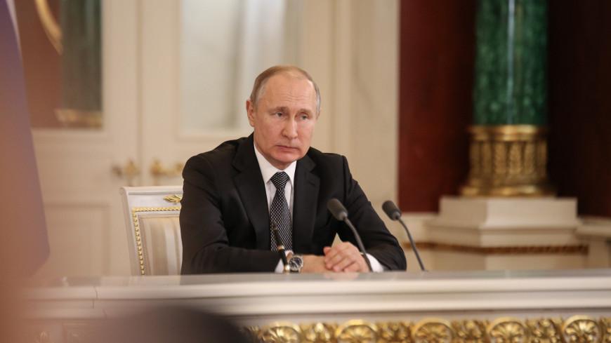 владимир путин, президент российской федерации, президент россии,
