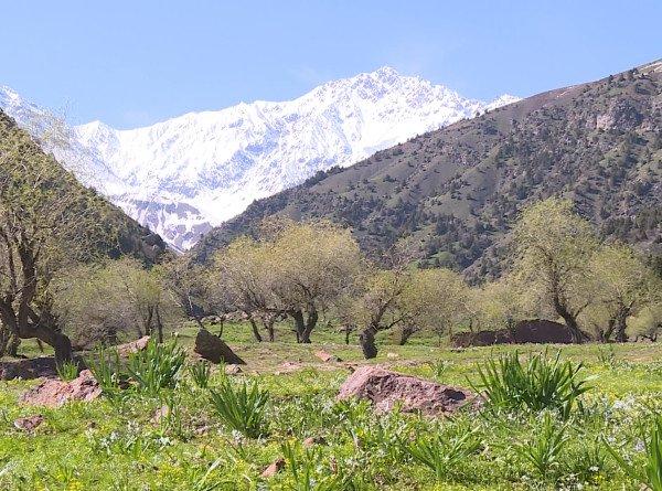 Жемчужина Востока: чудеса Гиссарской долины