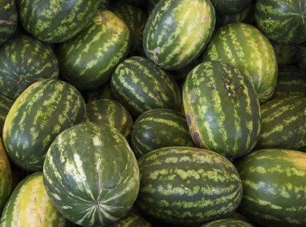Роскачество назвало главные признаки спелого арбуза