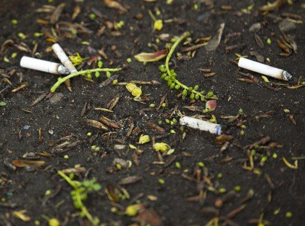 Австралийские медики выяснили, сколько лет жизни отнимает курение
