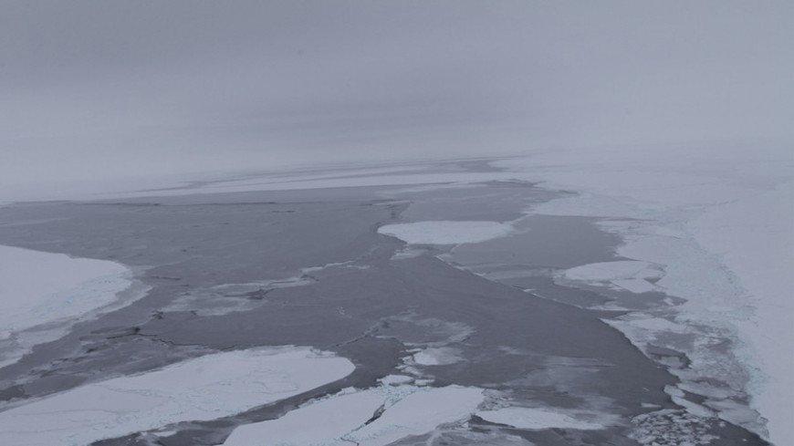 В Арктике и Антарктиде нашли микроорганизмы, питающиеся воздухом