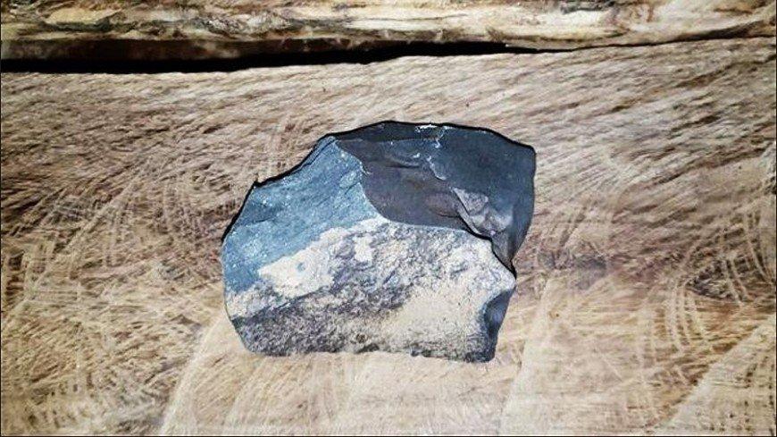 Метеорит из Коста-Рики может объяснить происхождение жизни на Земле