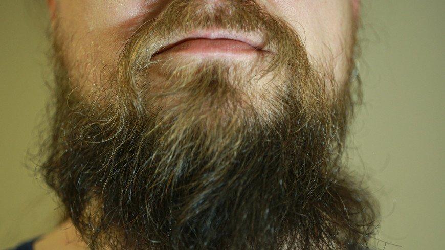 борода, мужчина, лицо, рот, губы, зубы, волосы, щетина, бритва, брить, усы, подбородок, растительность, щеки, брутальность, барбершоп, парикмахер, барбер,
