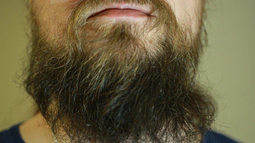 Список самых бородатых городов России возглавили Новосибирск и Челябинск