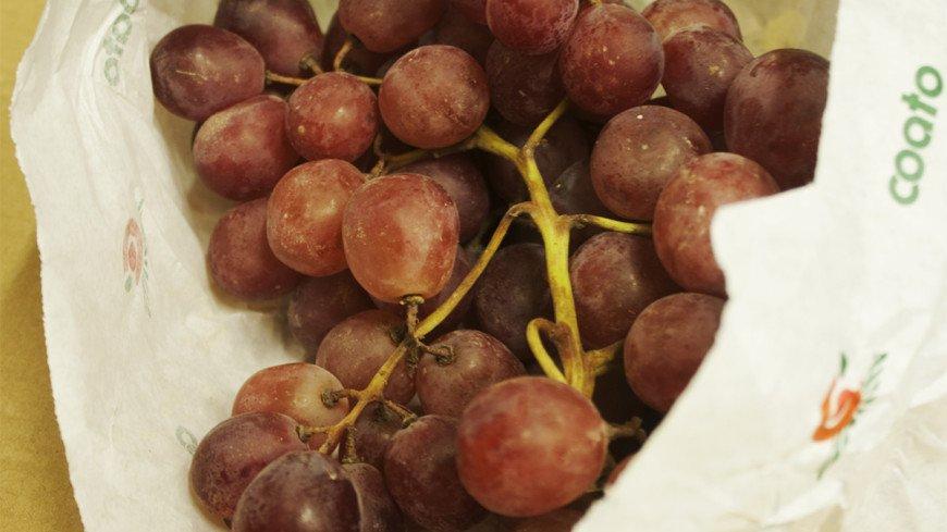 Жительницу Казани ужалил скорпион, вылезший из винограда