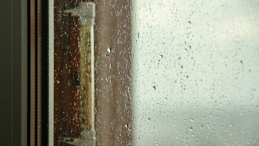 пасмурно, погода, гроза, дождь, погодные условия, облачность, ливень, ураган, тучи, небо, непогода, лужа, капли, вода, слякоть, осень, осадки, сырость, град, облака, весна, лето, город, городские условия, градусник, термометр,
