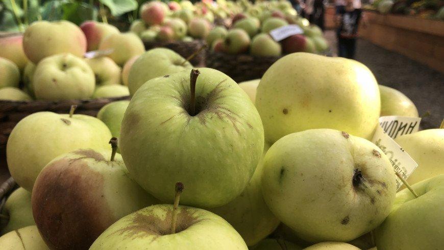 Цены на яблоки в России выросли почти на 30%