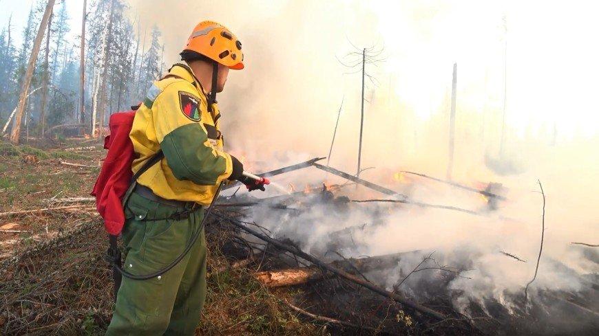 Объятый огнем Красноярский край: в регионе горит 150 тысяч гектаров леса
