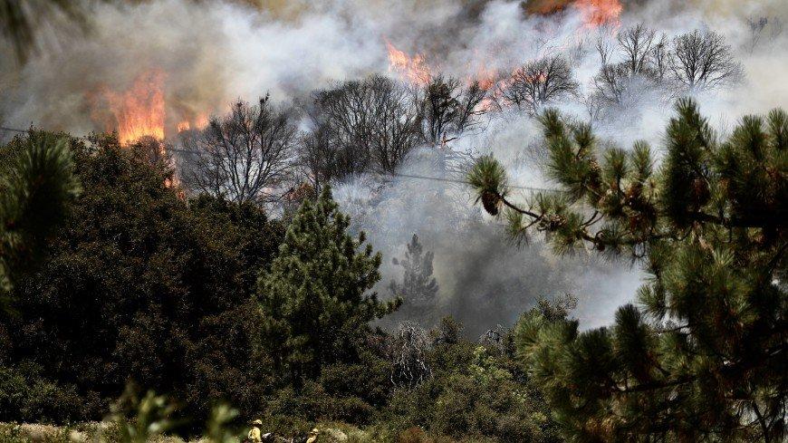 На юге Калифорнии горит около четырех тысяч гектаров