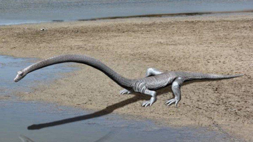 Тайну рептилии с трехметровой шеей раскрыли ученые в Швейцарии
