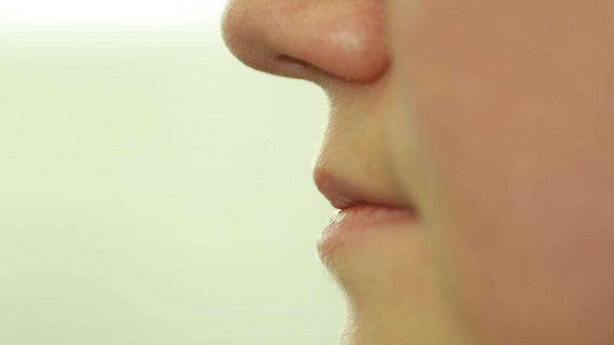 губы, щеки, нос, лицо, подбородок, профиль, голова, рот, язык,