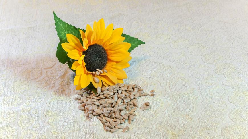 Семечки,орех, сухофрукты, семечки, ,орех, сухофрукты, семечки,