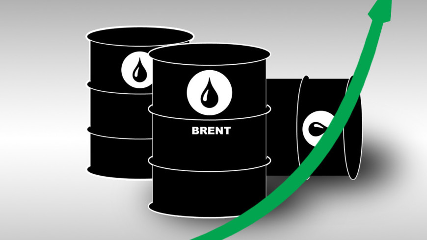 Цена нефти Brent превысила $51 впервые с марта