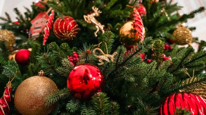 новый год, рождество, праздник, елка, елочные игрушки, новогодние игрушки, щелкунчик,