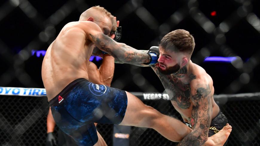 UFC представил подборку лучших нокаутов года (ВИДЕО)